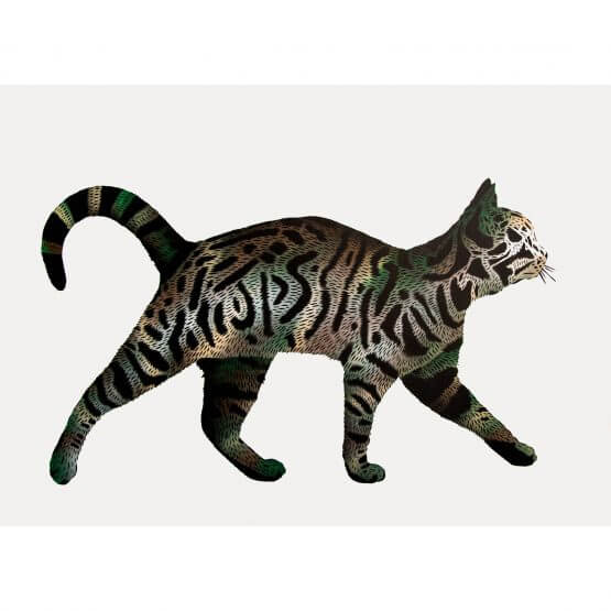 JPS - Camo Tag Cat Canvas 1/1