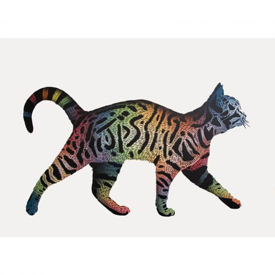 JPS - Rainbow Tag Cat AP #2