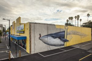 Seth Globepainter, Seawalls: Artists for Oceans, Napier, NZ. Photo Credit Vinny Cornelli